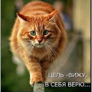 Дмитрий  Марданов on My World.